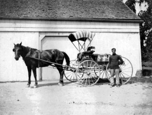 This photo shows a dairy wagon in front of the barn. The farm had dairy cows before 1920.